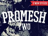 PROMESH TWO